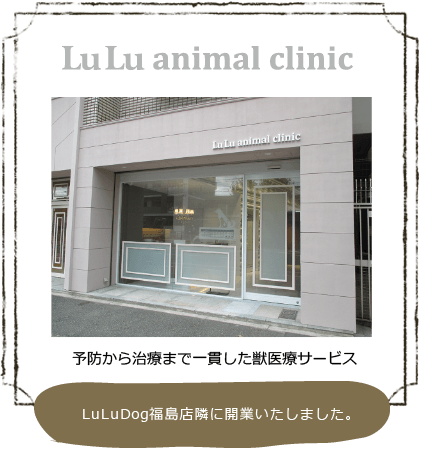 LuLu animal clinic
