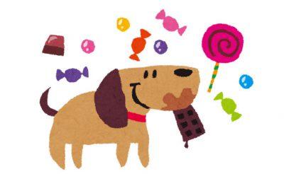 愛犬と肥満